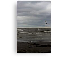 Wherever the Wind Takes Me Canvas Print