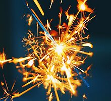 firecracker by shoshgoodman