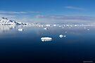 Reflecting on Antarctica 041 by Karl David Hill