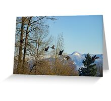 Fly Over The Mountain Greeting Card