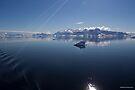 Reflecting on Antarctica 045 by Karl David Hill