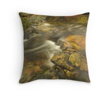 Every now and then... Throw Pillow