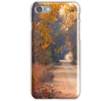 A Painter`s Light iPhone Cover iPhone Case/Skin