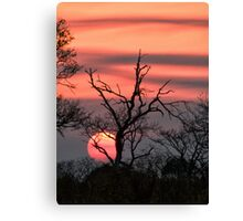 The Last Sun Canvas Print