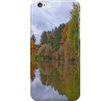 Reflective Jewel iPhone Cover iPhone Case/Skin
