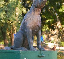 The Dog on the Tuckerbox by Penny Smith