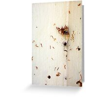 Redback Spider - 22 12 12  Greeting Card