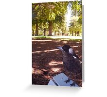 Magpie Two - 23 12 12 Greeting Card