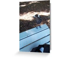 Magpie One - 23 12 12 Greeting Card