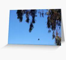 Crow - 22 12 12 - One Greeting Card