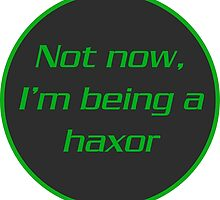 Not now, I'm Being A Haxor by Rice Rocca