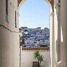 Spanish Views by Luka Skracic