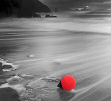 kerry Buoy - Cinnard Co. kerry by Pascal Lee (LIPF)