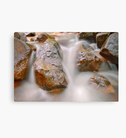 Fabric of nature Canvas Print