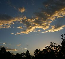 Sunset at Glenorie Wildlife Refuge by Erland Howden