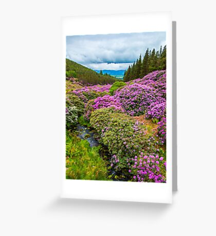 Vee Valley, County Tipperary, Wexford Greeting Card