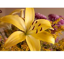 Perfect Lily Photographic Print