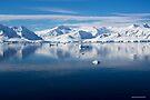 Reflecting on Antarctica 052 by Karl David Hill
