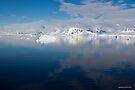 Reflecting on Antarctica 054 by Karl David Hill