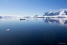 Reflecting on Antarctica 056 by Karl David Hill