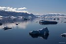 Reflecting on Antarctica 060 by Karl David Hill