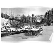 Winter Landscape with Reflection Poster