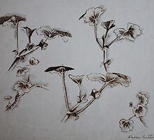 Plant Study by John Darren Sutton