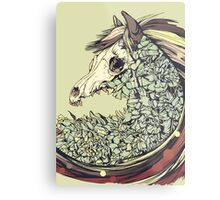 Beautiful Horse Old Metal Print