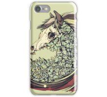 Beautiful Horse Old iPhone Case/Skin