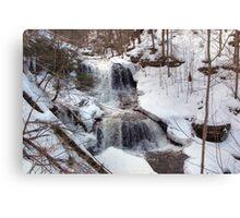 Winter Scene At Tuscarora Falls Canvas Print