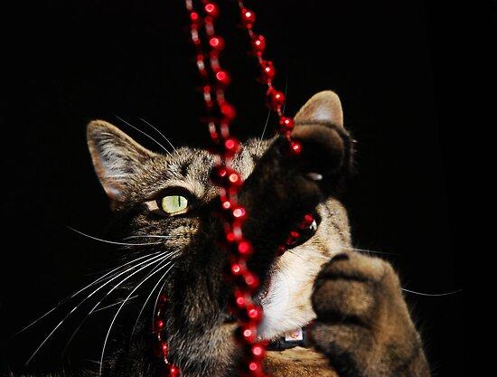 Beads.... Glorious Beads!!! by jodi payne