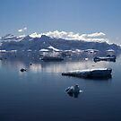 Reflecting on Antarctica 062 by Karl David Hill