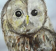 Tawny Owl - Wall Art by JamesPeart