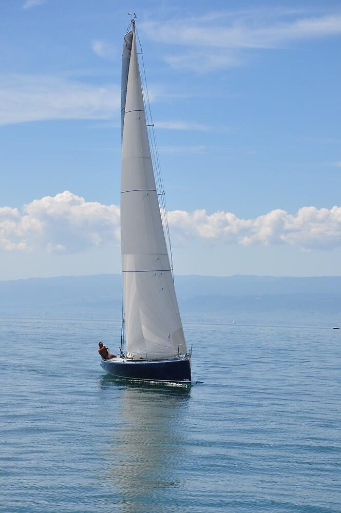 sail away by nag71
