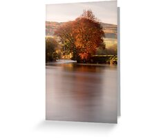 Fiery tree on the River Tay Greeting Card