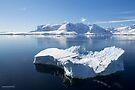 Reflecting on Antarctica 067 by Karl David Hill