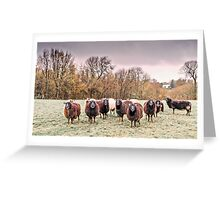 The Flock Greeting Card