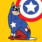 Capt. Americat by MldirtySocks