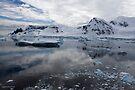 Reflecting on Antarctica 073 by Karl David Hill
