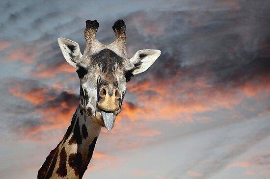 *Goofy Giraffe* by DeeZ (D L Honeycutt)