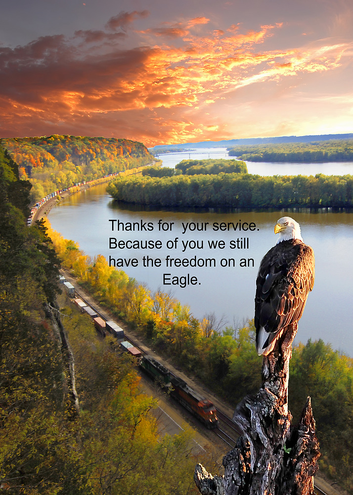 Thank You for your Service Eagle Domain by Randy & Kay Branham