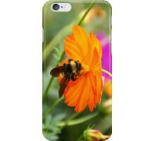 Bumble Bee iPhone Case iPhone Case/Skin
