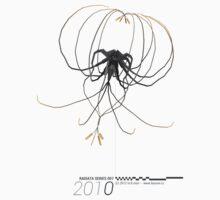 Radiata Series 001-2010 (black) by mkmori