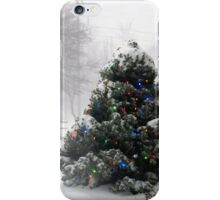 Winter`s Cold iPhone Case iPhone Case/Skin