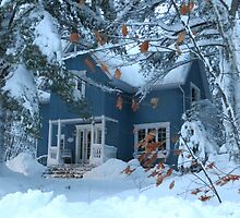 Let It Snow?   by Sandra Fortier