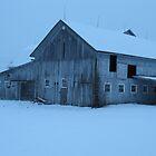 Old barn at twilight by Liesl Gaesser