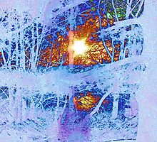 "Snowblind, the beginning. by David ""Oz""  Osterczy"