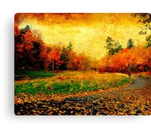 Of reds  and rusts Canvas Print