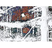Red, Blue, And Whiteout Photographic Print