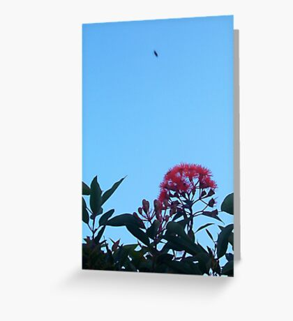 Christmas Bee - 23 12 12 - Three Greeting Card
